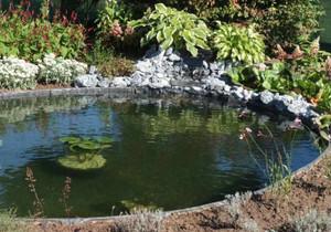 Plastic Pond Edging