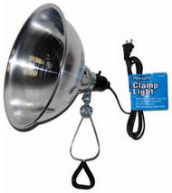 150w Clamp Light/6'cord