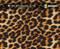 Cheetah Real Fur Animal Skin Big Brain Graphics white Base Buy Big Brain Graphics