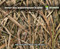 Mossy Oak Shadowgrass Blades Duck Hunting Reeds Hunting Camo Hydrographics Film Dip Pattern Big Brain Graphics Authorized Seller