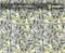 Big Face Hundreds $100 Bills Big Faces Benjamins Hundred Dollar Bills Big Brain Graphics Hydrographics Film Pattern White Base