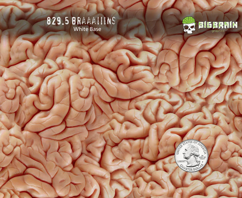 Brains Braaaiiins Brainy Realistic Hydrographics Film Pattern Intestines Body Parts Guts Big Brain Graphics Trusted USA Seller White Base Quarter Reference