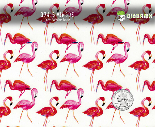 Flamingos Mingos Tropical Bird Pink Birds Hydrographic Film For Sale Hydrographics Dip Pattern Big Brain Graphics USA Seller Yeti White Base Quarter Reference