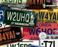 License Plates USA Lisense Lisence States Driving Hydrographic Hydrographics Pattern Dip Water Transfer Printing USA Seller Big Brain Graphics Yeti White Nanochem Base Quarter Reference