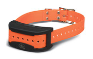 SportDOG Contain + Train Dog Fence Collar