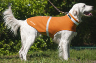 Reflective Dog Jacket Waterproof