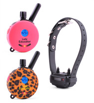 Lady Educator Remote Dog Trainer for One Dog