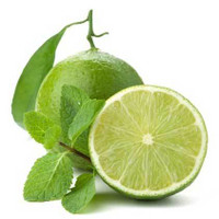 30% Off Lime - (Citrus aurantifolia) Essential Oil