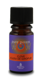 Essential Nature Clove Essential Oil Blended in Organic Jojoba Oil (5 mL)