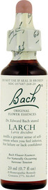 Bach Larch (20 mL)