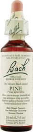 Bach Pine (20 mL)
