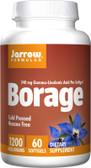 Borage GLA-240 60 sGels, Jarrow
