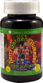 Berry Garden Gummies Kids Multi Assorted Flavors 60 Gummies, Nature's Dynamics
