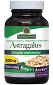 Astragalus Root Standardized 60 Caps Nature's Answer, Immune System