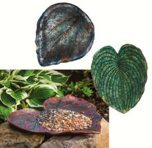 Nature's Inspiration, Leaf Feeder, Large