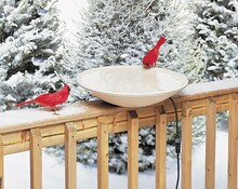 Heated Bird Bath (20 in.) w/Hardware