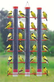 Finches Favorite, 3 Tube Feeder