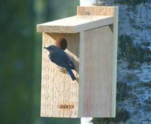 Bluebird House View Thru