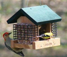 2 Suet and A Seed
