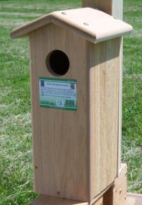 Woodpecker House Flicker