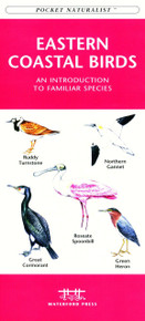 Eastern Coastal Birds