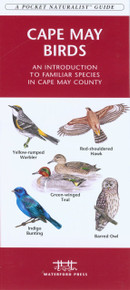 Cape May Birds