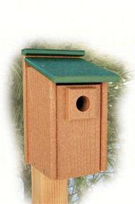 Going Green Bluebird House