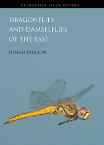 Dragonflies and Damselflies of the East