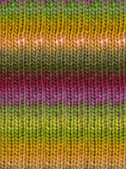 Noro #95 Green, Orange, Pink, Kureyon Yarn (4 - Medium)