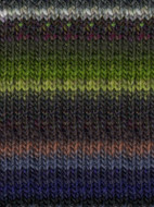 Noro #196 Green, Grey, Purple, Kureyon Yarn (4 - Medium)