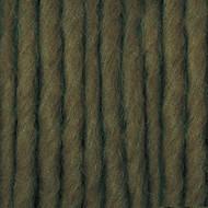 Bernat Lichen Roving Yarn (5 - Bulky)