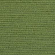 Lion Brand Kelly Green Vanna's Choice Yarn (4 - Medium)