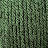 Patons Dark Green Tea Canadiana Yarn (4 - Medium)