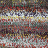 Patons Bramble Colorwul Yarn (5 - Bulky)