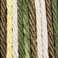 Lily Sugar 'n Cream Wooded Moss Ombre Lily Sugar 'n Cream Yarn - Super Size (4 - Medium)