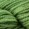 Briggs & Little Fern Green Heritage Yarn (4 - Medium)