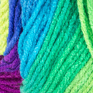 Red Heart Parrot Stripe Super Saver Yarn (4 - Medium)
