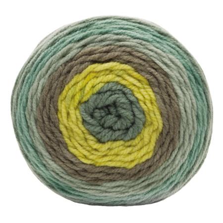 Bernat Rad Botanical Pop Yarn (4 - Medium)
