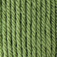 Patons Cedar Green Canadiana Yarn (4 - Medium)