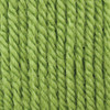 Patons Lime Juice Canadiana Yarn (4 - Medium)