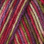 Caron Perennial Varg Jumbo Yarn (4 - Medium)