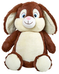 Brown Rabbit Cubby with a personalised teddy bear message