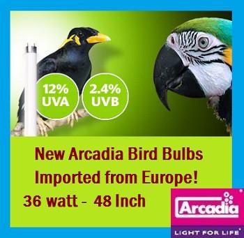 Arcadia   Bird   Lamp   T8   48   Inch