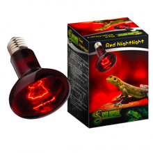 50 Watt InfraRed Heat Light Bulb