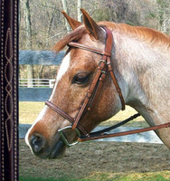 Bobby's Raised, Fancy Stitched Bridle with Fancy Reins