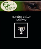 Sterling Silver Charm -Trophy