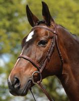 Kincade Fancy Stitched Raised Bridle, Pony & Cob