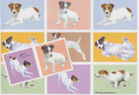 Jack Russell Gift Wrap with Tags