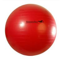 "Horsemen's Pride Jolly Mega Ball, 25"""