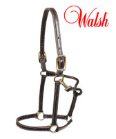 Walsh Showman Leather Halter with Fixed Nose, Havana